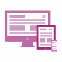 Website & Hosting